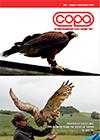 Copa-blad-4-2017